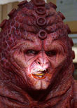 Voice of the Zygons