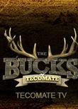 The Bucks of Tecomate