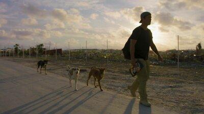 The Dogs of Hurricane Dorian