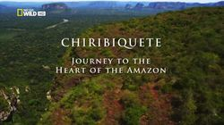 Chiribiquete: Journey to the Heart of the Amazon