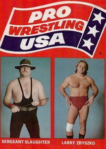 Pro Wrestling USA