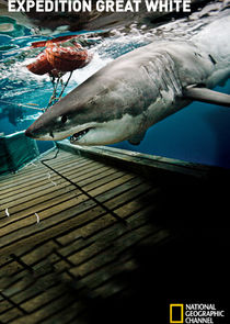 Expedition Great White