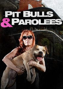 Watch Series - Pit Bulls & Parolees