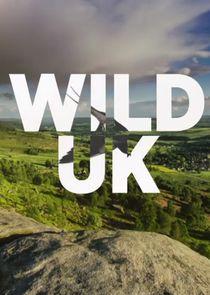 Wild UK
