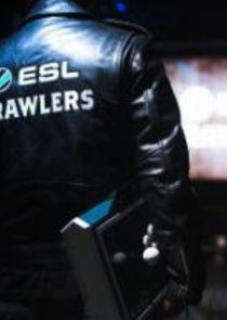 ESL Brawlers