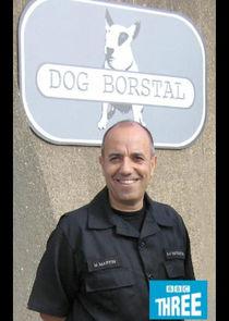 Dog Borstal