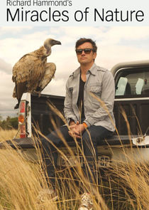 Richard Hammond's Miracles of Nature