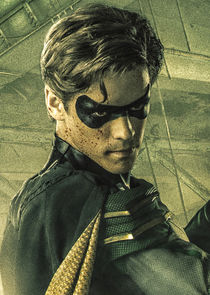 Dick Grayson / Robin