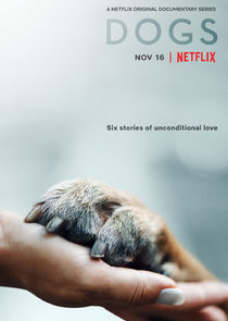 Watch Series - Dogs
