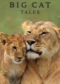 Watch Series - Big Cat Tales