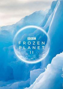 Frozen Planet II