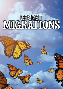 Secret Migrations