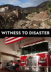Witness to Disaster small logo