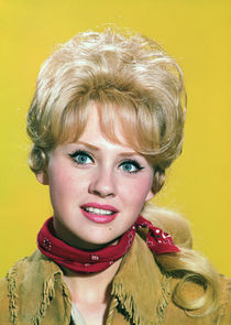 Melody Patterson Wrangler Jane Angelica Thrift