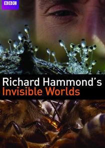 Richard Hammond's Invisible Worlds