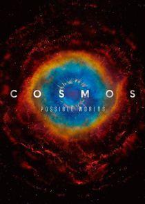 Cosmos small logo