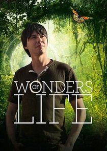 Watch Series - Wonders of Life