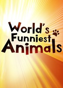 Watch Series - World's Funniest Animals