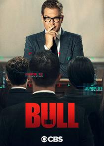 Watch Series - Bull