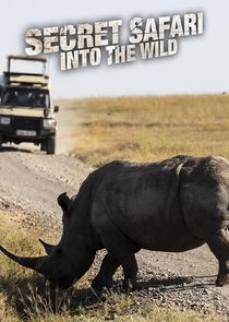 Watch Series - Secret Safari: Into the Wild