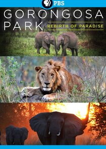 Gorongosa Park: Rebirth of Paradise