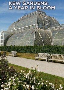 Watch Series - Kew Gardens: A Year in Bloom