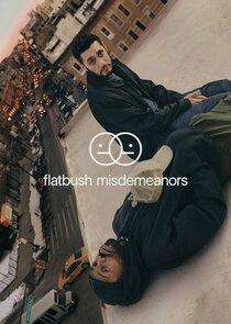 Flatbush Misdemeanors cover