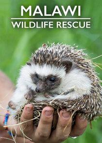 Watch Series - Malawi Wildlife Rescue