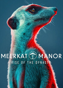 Watch Series - Meerkat Manor: Rise of the Dynasty
