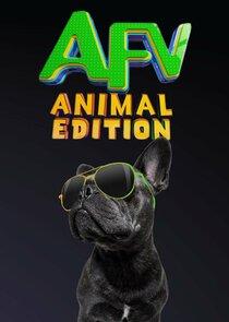 Watch Series - America's Funniest Videos: Animal Edition