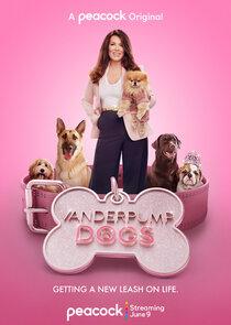 Watch Series - Vanderpump Dogs