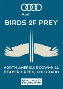 Audi Birds of Prey
