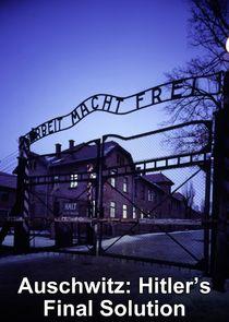 Auschwitz: Hitler's Final Solution