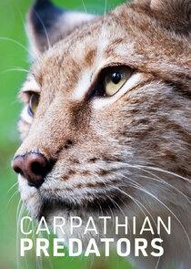 Watch Series - Carpathian Predators