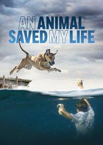 Watch Series - An Animal Saved My Life