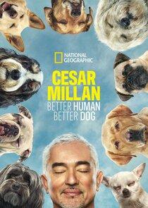 Watch Series - Cesar Millan: Better Human Better Dog