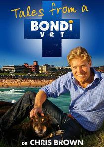 Watch Series - Bondi Vet