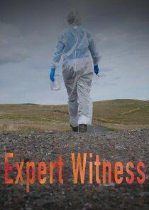 Watch Series - Expert Witness