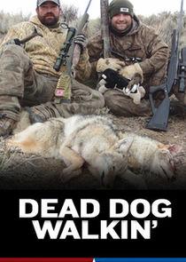 Dead Dog Walkin'