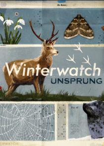 Winterwatch Unsprung