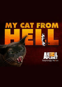 Watch Series - My Cat from Hell