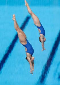 FINA Diving Championships