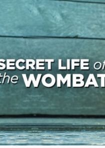 Secret Life of the Wombat