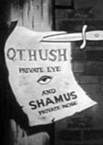 Q.T. Hush