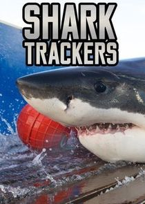 Shark Trackers