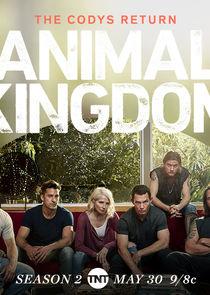 Animal Kingdom small logo