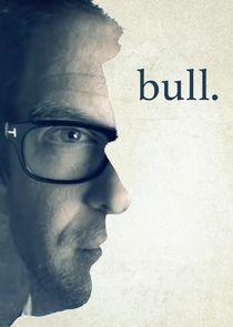 Bull small logo
