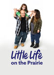 Little Life on the Prairie