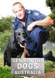 Send in the Dogs Australia