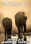 Waterhole: Africa's Animal Oasis